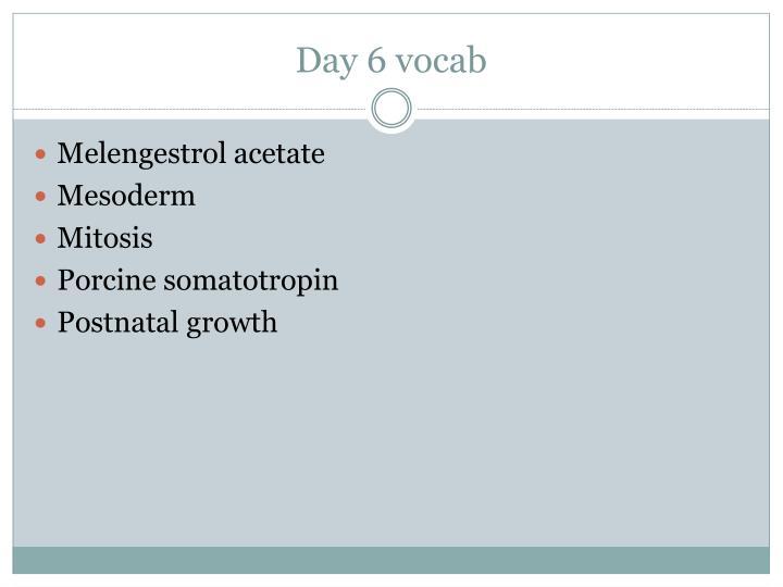 Day 6 vocab