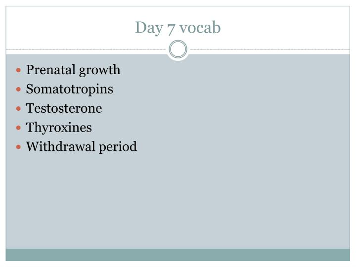 Day 7 vocab