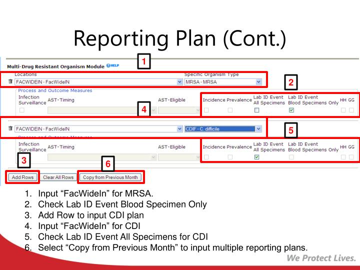 Reporting Plan (Cont.)