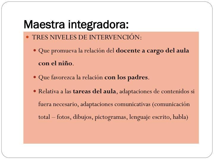 Maestra integradora: