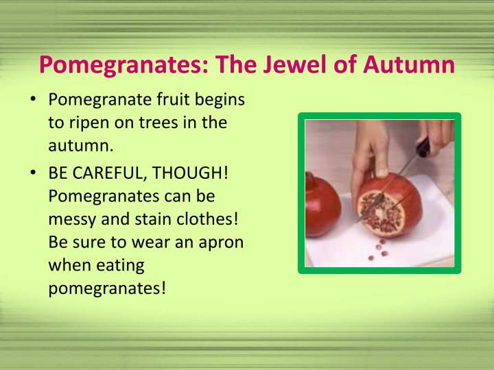 Pomegranates: The Jewel of Autumn
