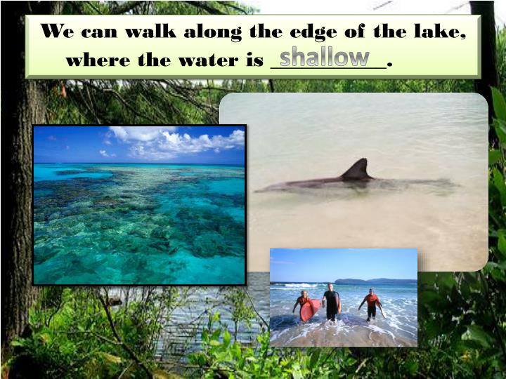 We can walk along the edge of the lake, where the water is