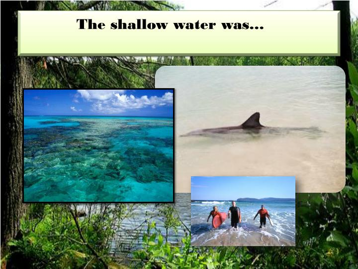 The shallow water was…