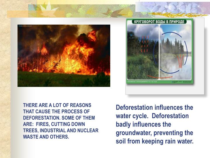 THERE ARE A LOT OF REASONS THAT CAUSE THE PROCESS OF  DEFORESTATION. SOME OF THEM ARE:  FIRES, CUTTING DOWN TREES, INDUSTRIAL AND NUCLEAR WASTE AND OTHERS.