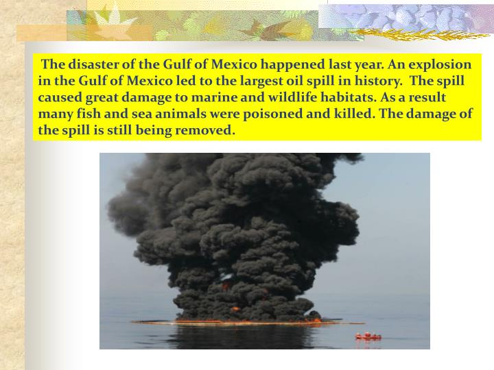 The disaster of the Gulf of Mexico happened last year. An explosion  in the Gulf of Mexico led to the largest oil spill in history.  The spill caused