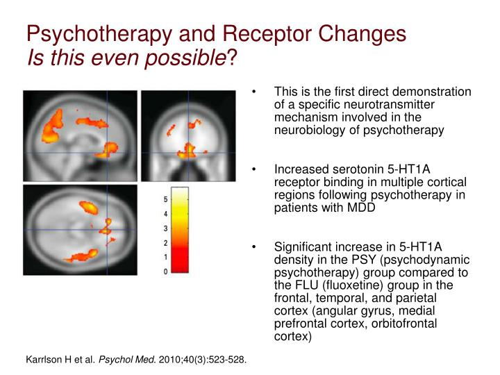 Psychotherapy and Receptor Changes
