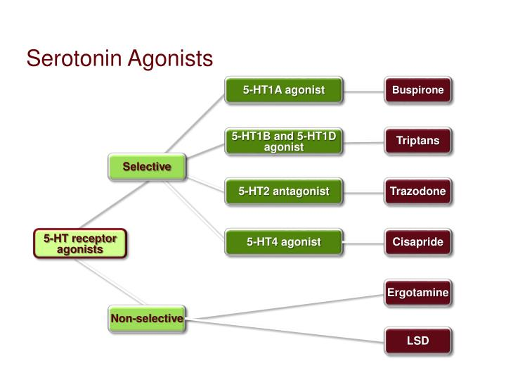 Serotonin Agonists
