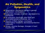 air pollution health and epigenetics