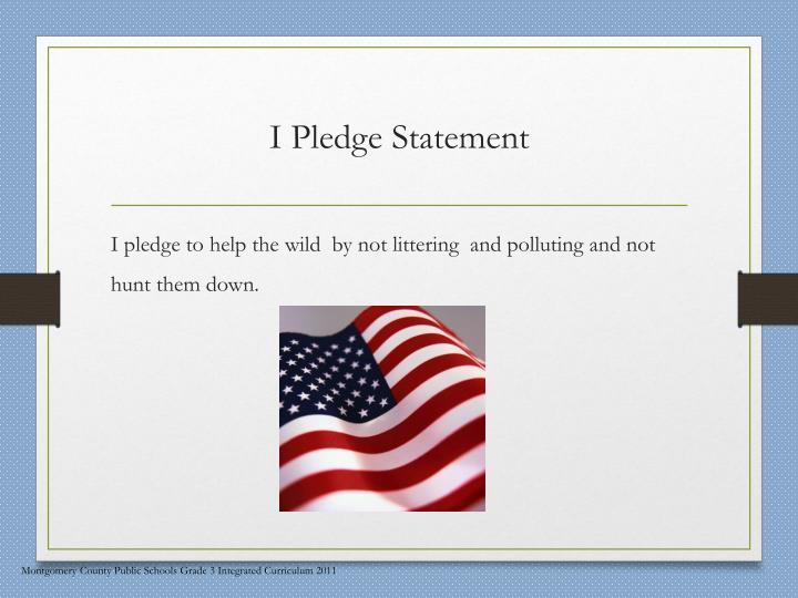 I Pledge Statement