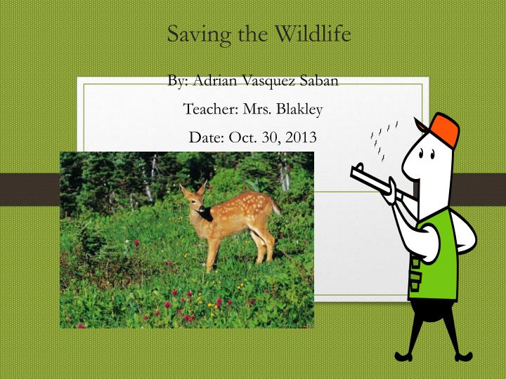 Saving the wildlife