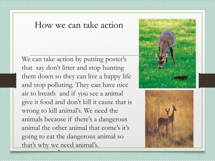 How we can take action