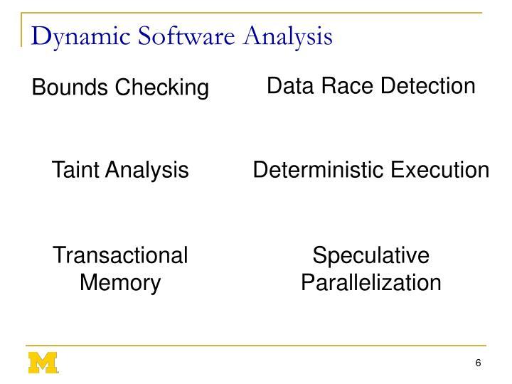 Dynamic Software Analysis