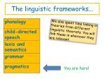 the linguistic frameworks