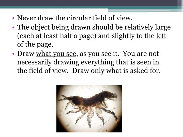 Never draw the circular field of view.