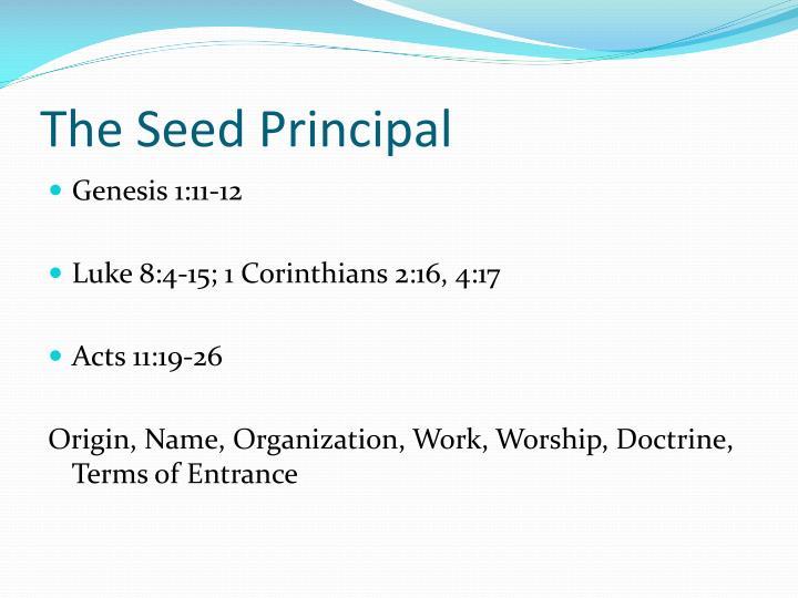 The Seed Principal