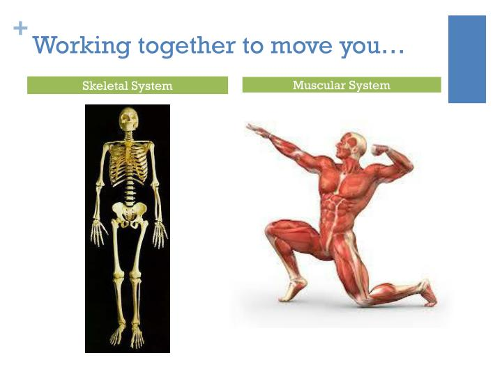 Working together to move you…