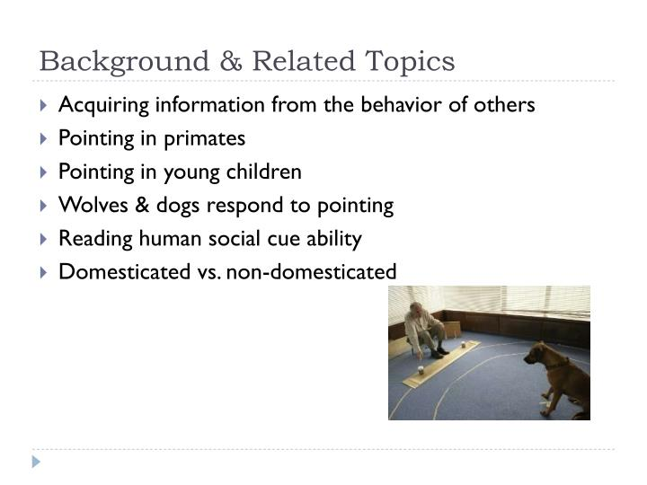 Background related topics