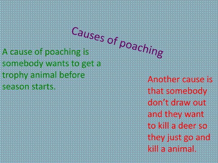 Causes of poaching