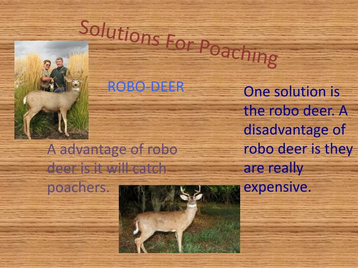 Solutions For Poaching