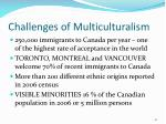 challenges of multiculturalism