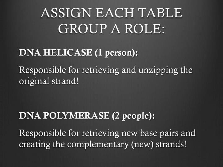 ASSIGN EACH TABLE GROUP A ROLE: