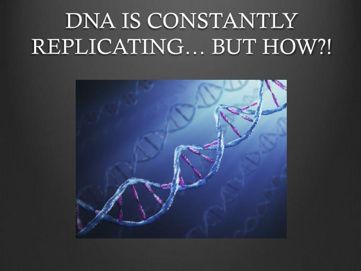 DNA IS CONSTANTLY REPLICATING… BUT HOW?!