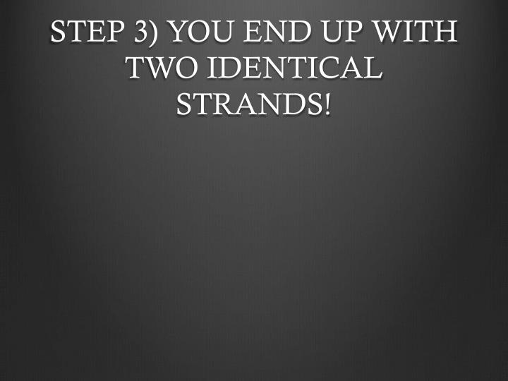STEP 3) YOU END UP WITH TWO IDENTICAL STRANDS!