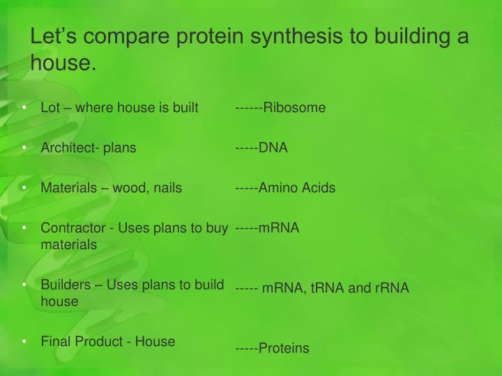 Let's compare protein synthesis to building a house.