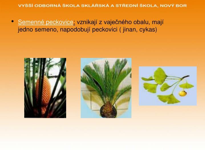 Semenné peckovice