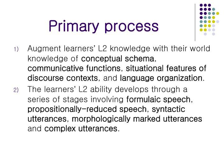 Primary process