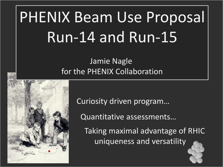 PHENIX Beam Use Proposal