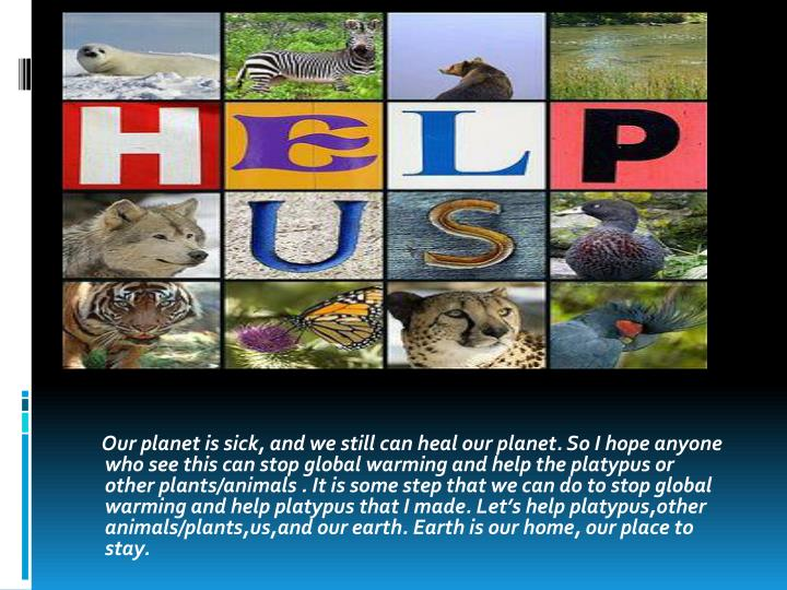 Our planet is sick, and we still can heal our planet. So I hope anyone who see this can stop global warming and help the platypus or other plants/animals . It is some step that we can do to stop global warming and help platypus that I made. Let's help platypus,other animals/plants,us,and our earth. Earth is our home, our place to stay.