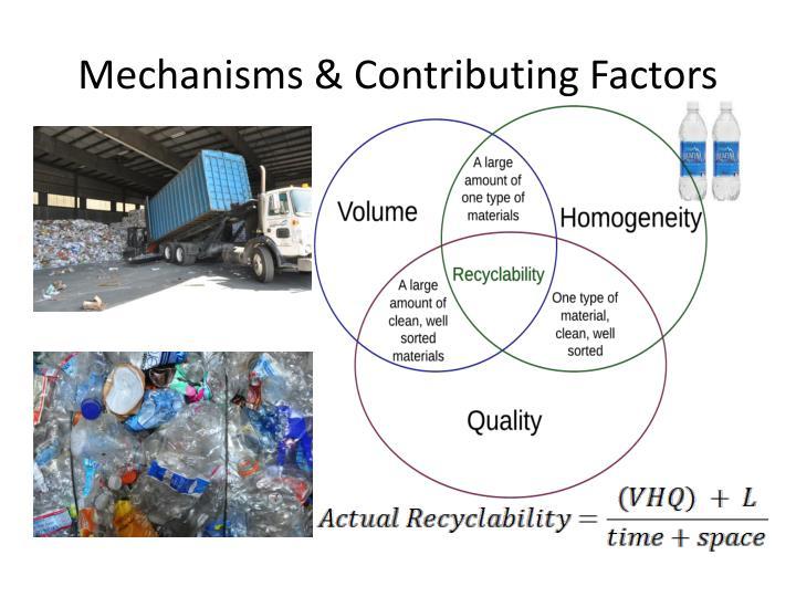 Mechanisms & Contributing Factors