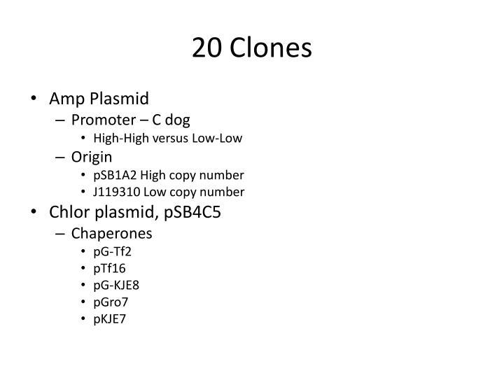 20 Clones