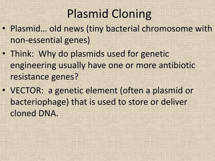 Plasmid Cloning