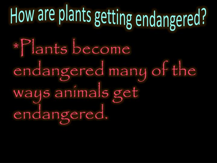 How are plants getting endangered?
