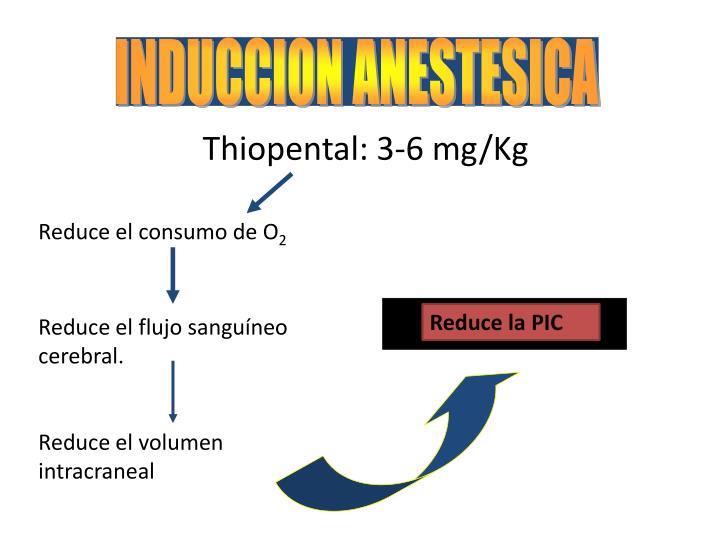 INDUCCION ANESTESICA