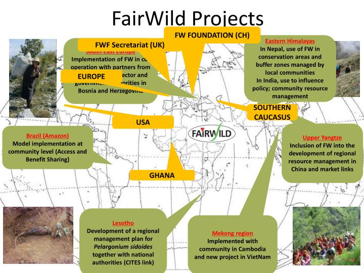 FairWild Projects