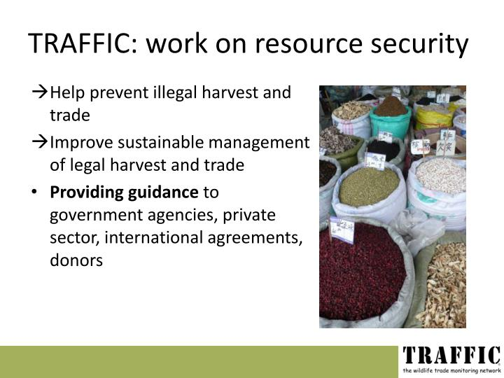 TRAFFIC: work on resource security