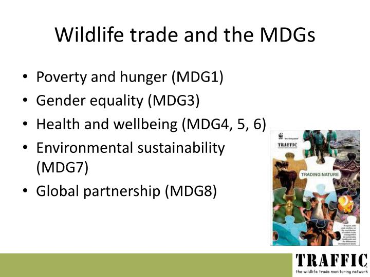 Wildlife trade and the MDGs