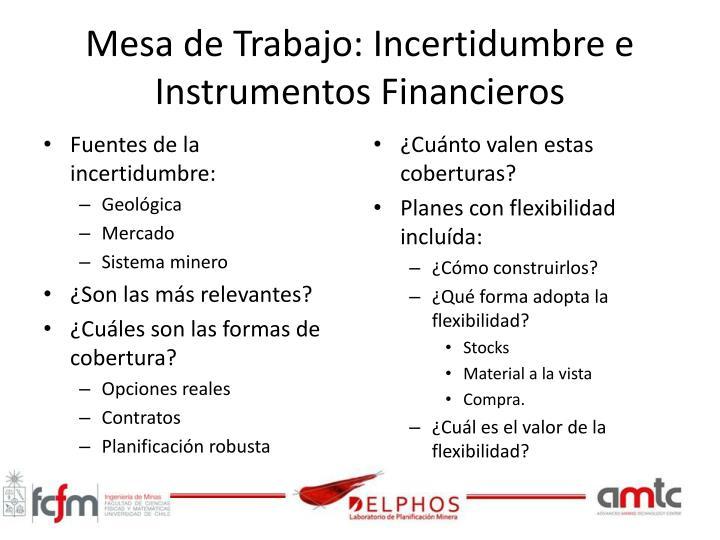 Mesa de Trabajo: Incertidumbre e Instrumentos Financieros
