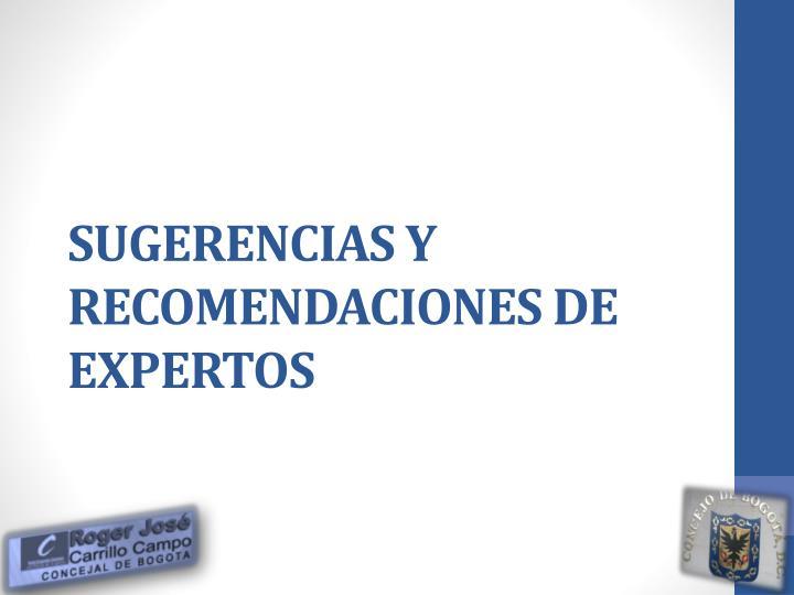 SUGERENCIAS Y RECOMENDACIONES DE EXPERTOS