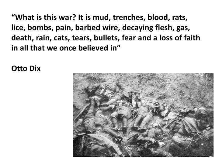"""What is this war? It is mud, trenches, blood, rats, lice, bombs, pain, barbed wire, decaying flesh, gas, death, rain, cats, tears, bullets, fear and a loss of faith in all that we once believed in"""