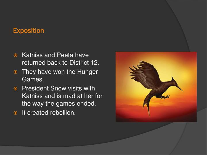 exposition of the hunger games