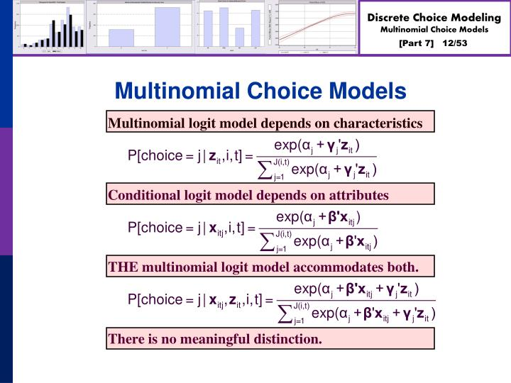 Multinomial Choice Models