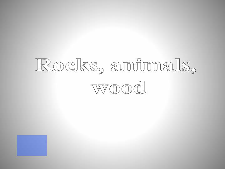 Rocks, animals,