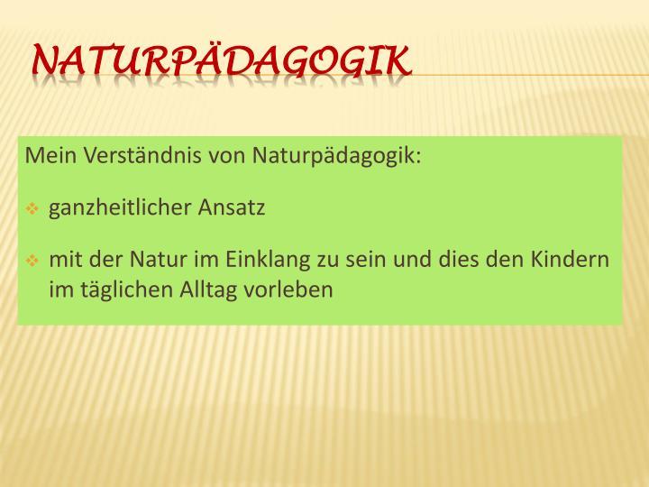 Mein Verständnis von Naturpädagogik: