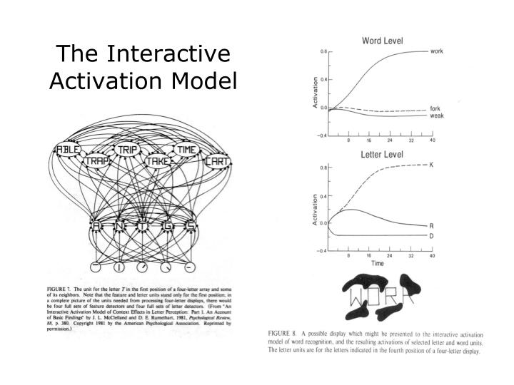 The Interactive Activation Model