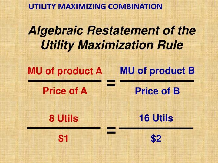 UTILITY MAXIMIZING COMBINATION