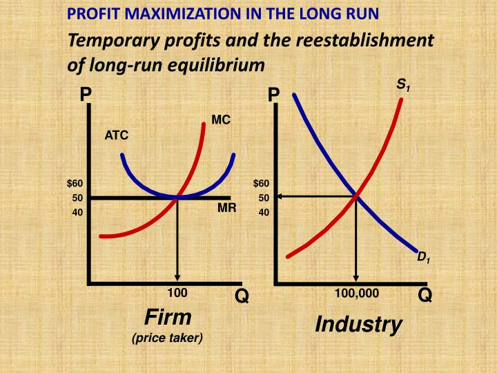 PROFIT MAXIMIZATION IN THE LONG RUN